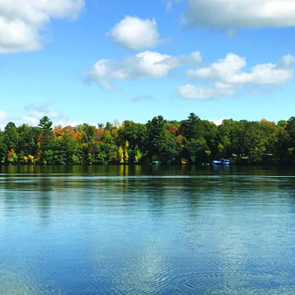 a clear lake sits in front of a shoreline with colorful trees